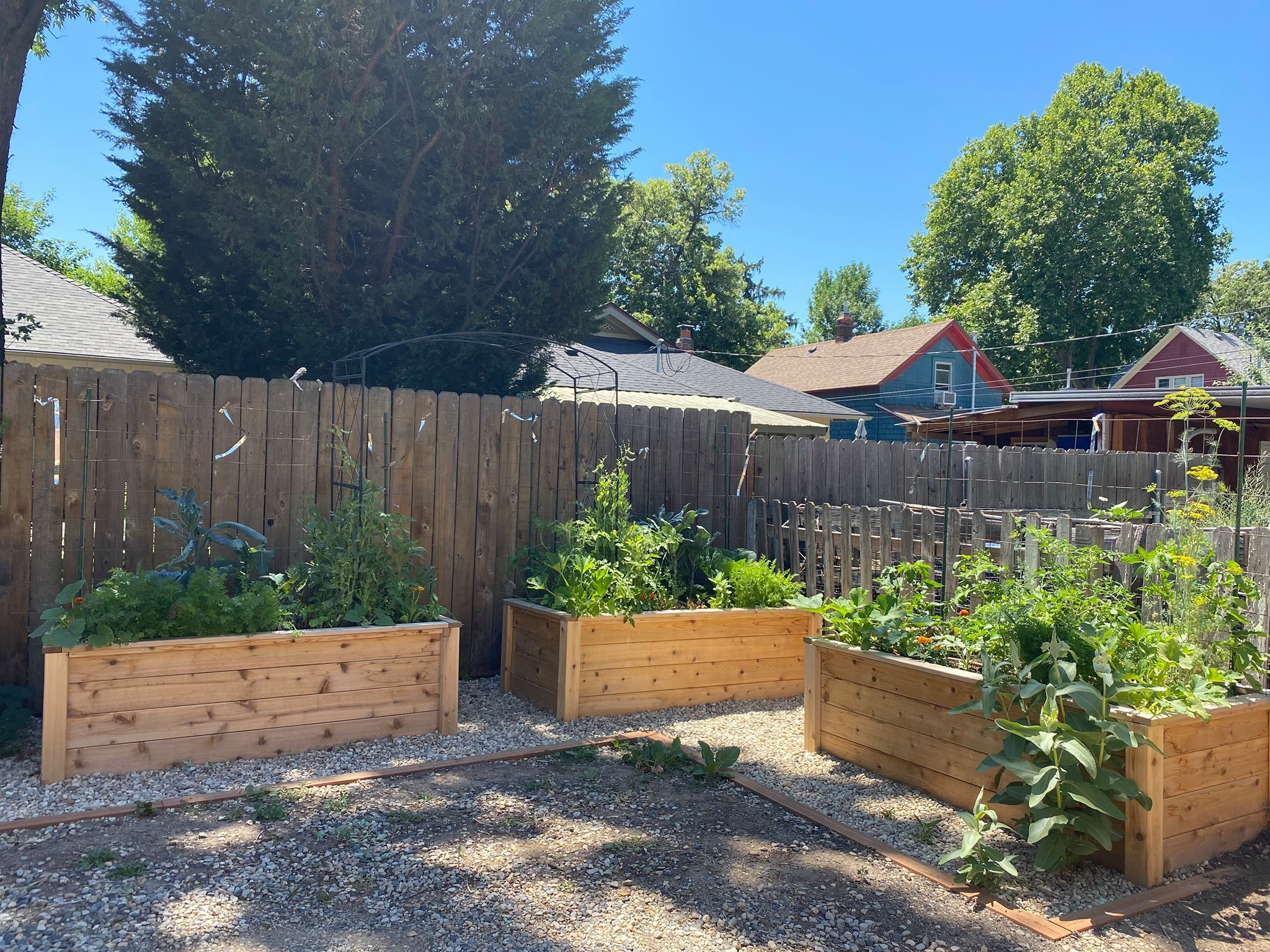 Are Raised Beds Better for Gardening?